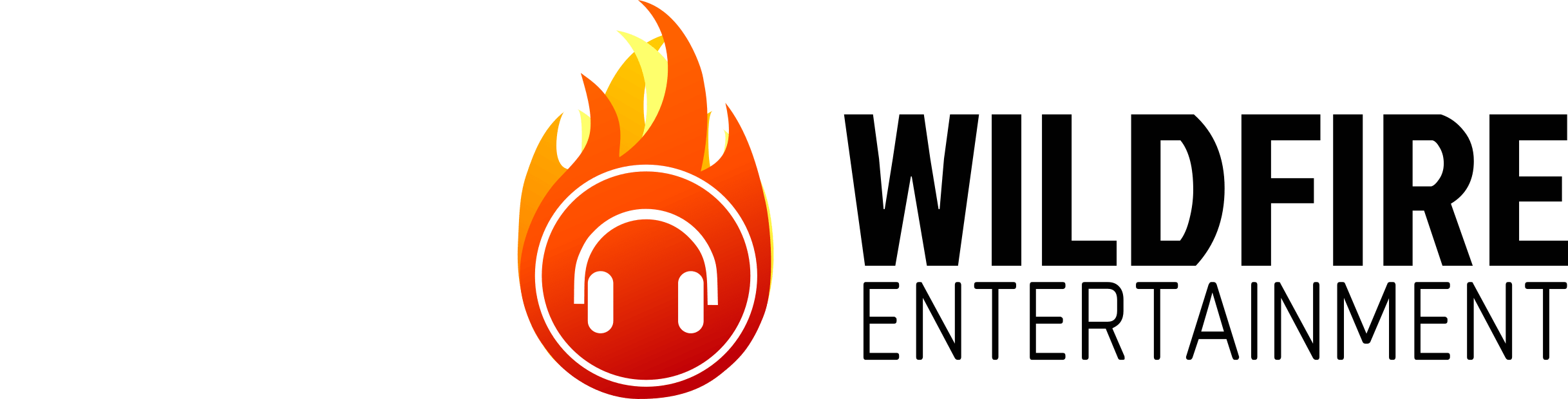 Wildfire Entertainment - DJ - Idaho Falls Weddings